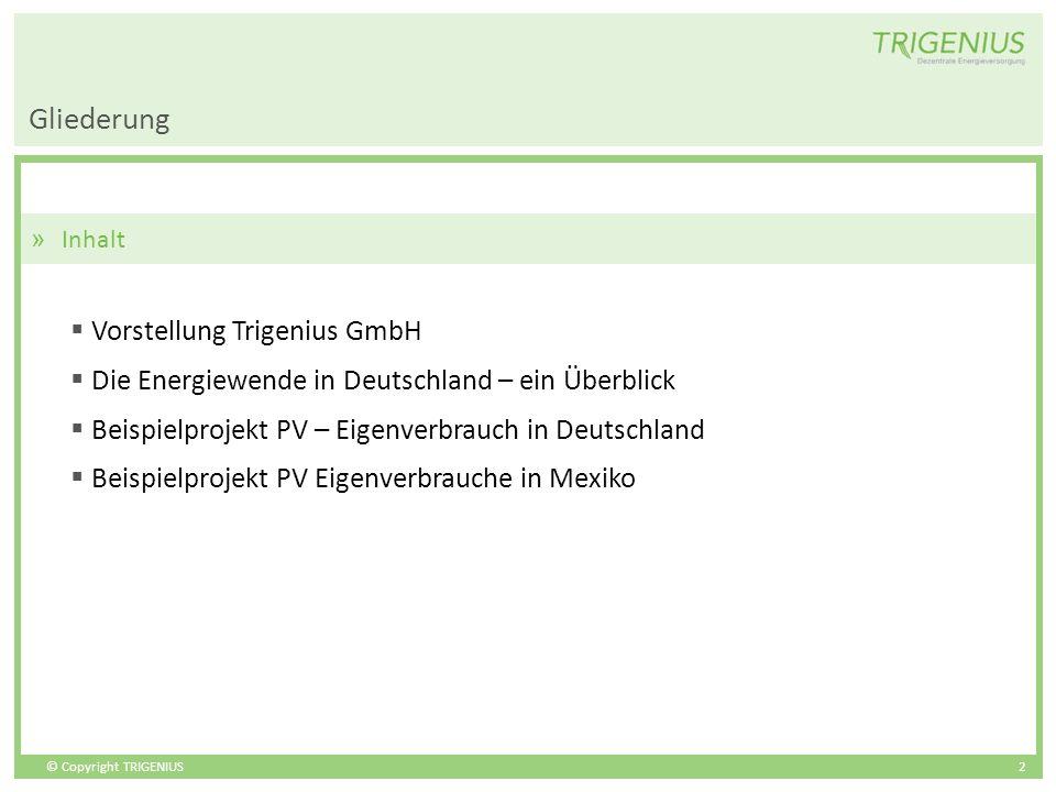 Gliederung Vorstellung Trigenius GmbH