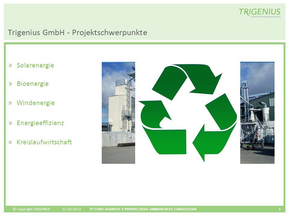 Trigenius GmbH - Projektschwerpunkte
