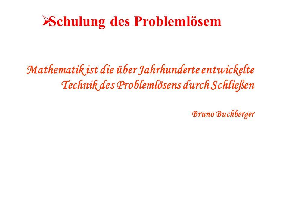 Schulung des Problemlösem