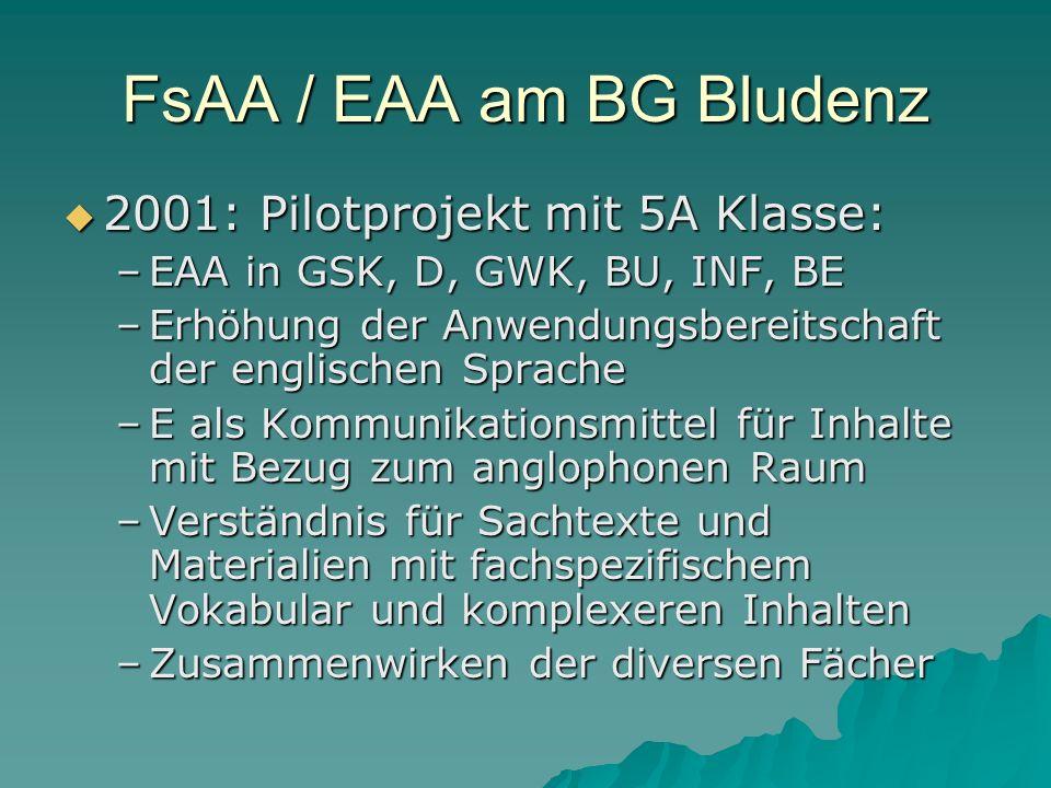 FsAA / EAA am BG Bludenz 2001: Pilotprojekt mit 5A Klasse: