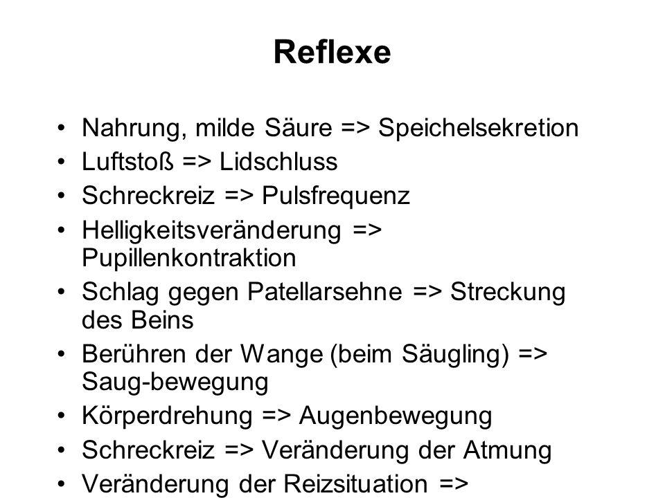 Reflexe Nahrung, milde Säure => Speichelsekretion