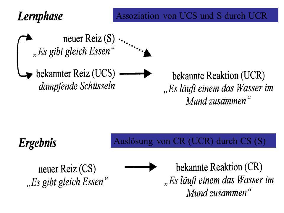 Assoziation von UCS und S durch UCR