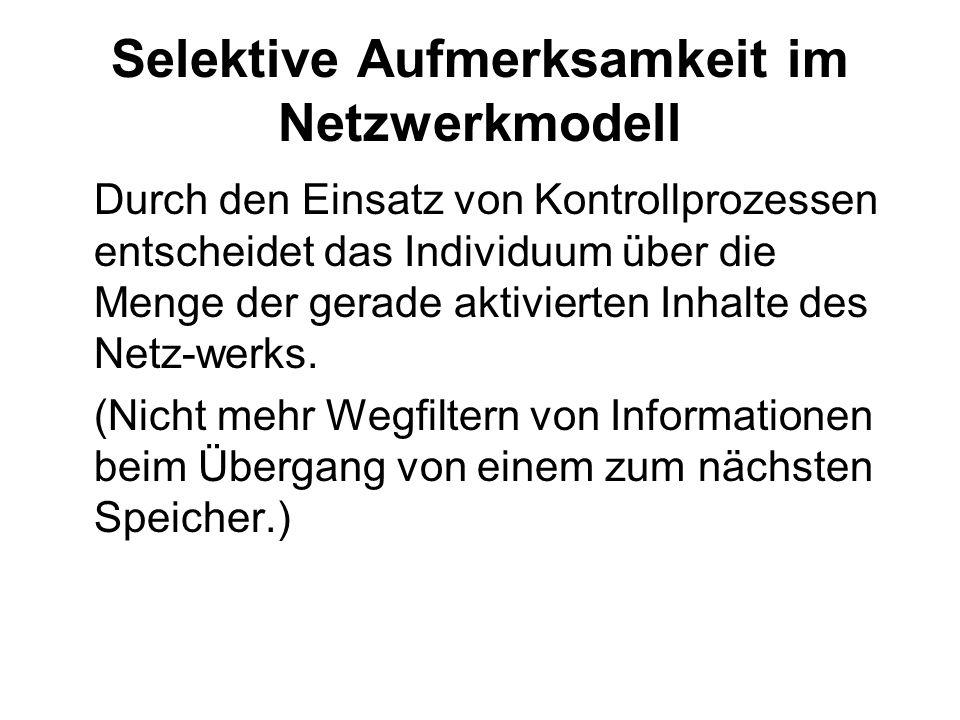 Selektive Aufmerksamkeit im Netzwerkmodell