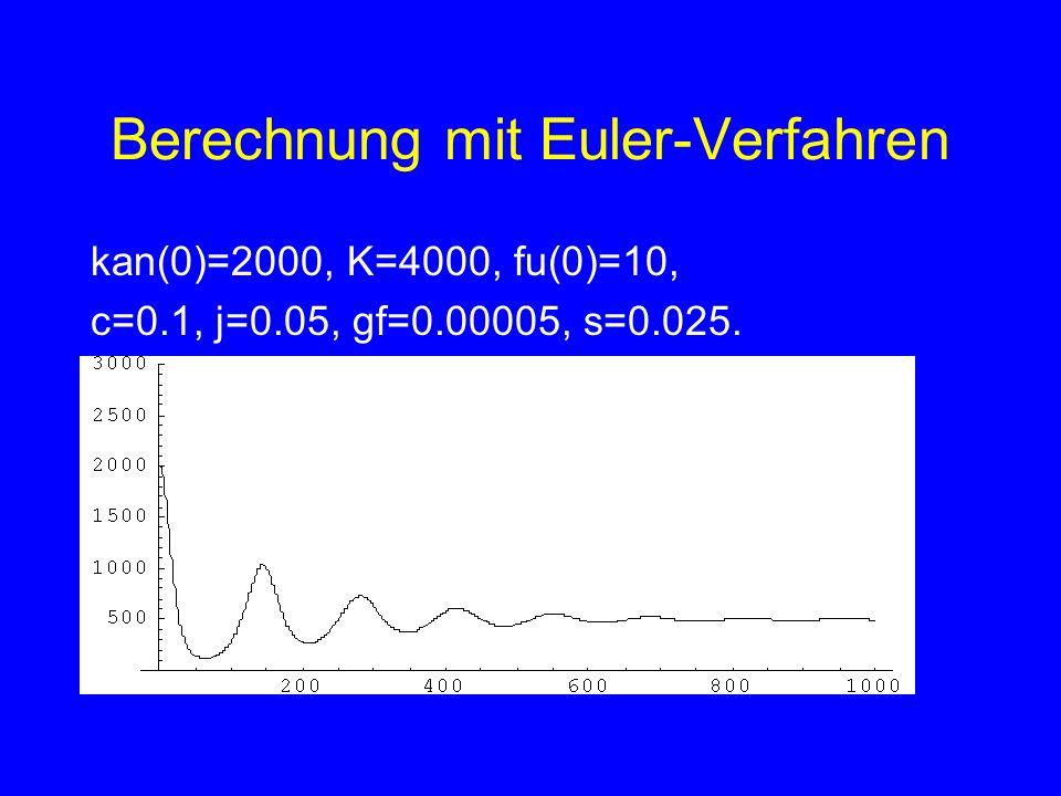 Berechnung mit Euler-Verfahren
