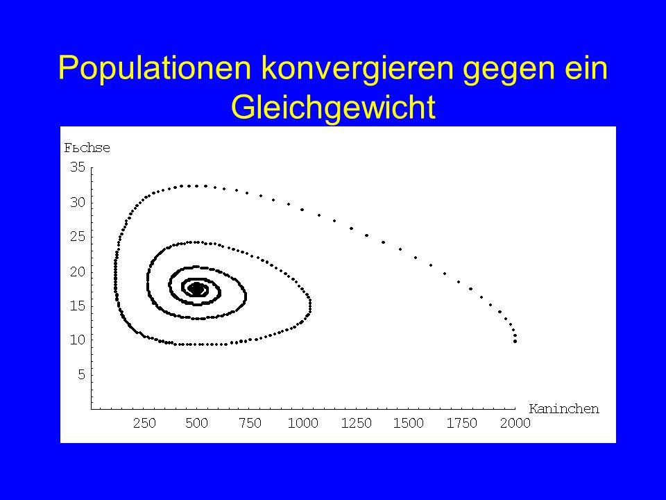Populationen konvergieren gegen ein Gleichgewicht