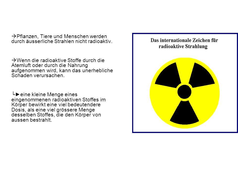 Pflanzen, Tiere und Menschen werden durch äusserliche Strahlen nicht radioaktiv.
