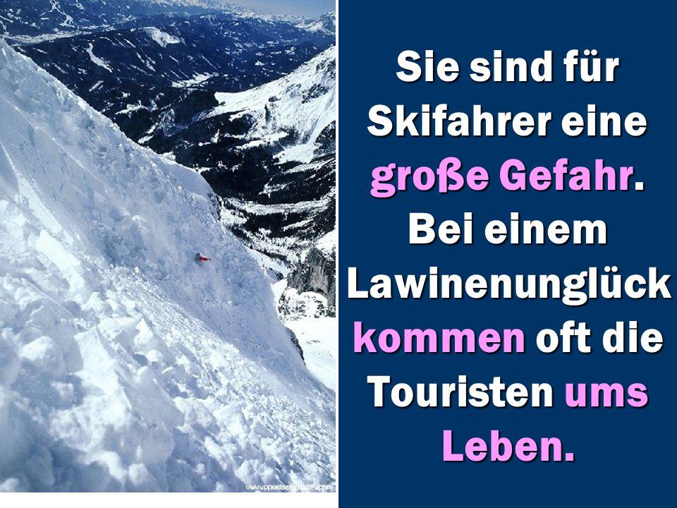 Sie sind für Skifahrer eine große Gefahr