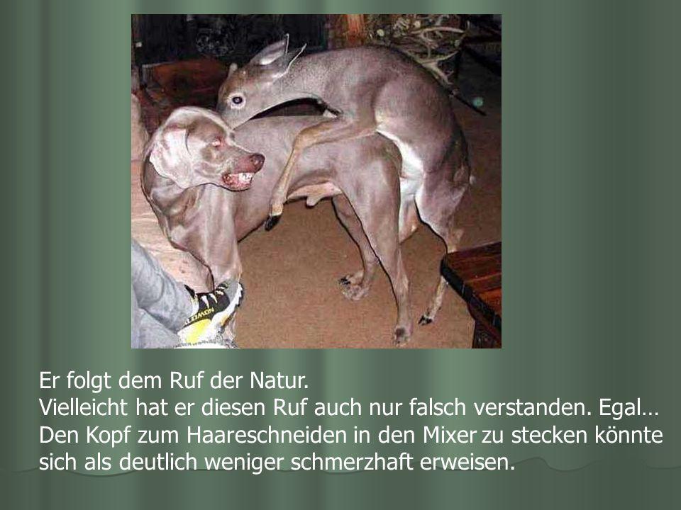 Er folgt dem Ruf der Natur.