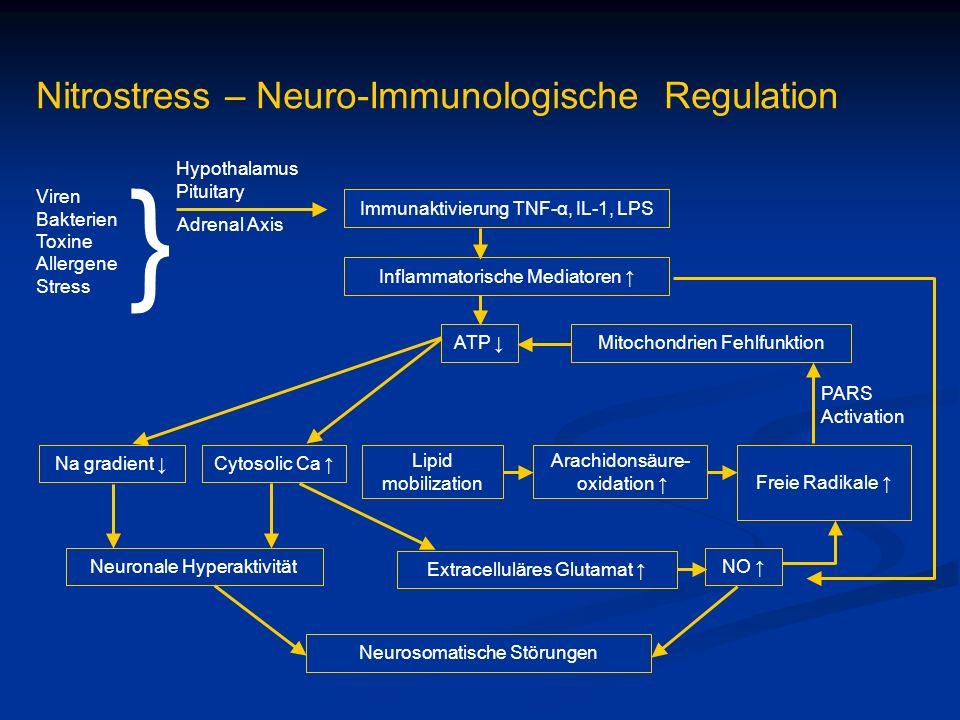 } Nitrostress – Neuro-Immunologische Regulation Hypothalamus Pituitary