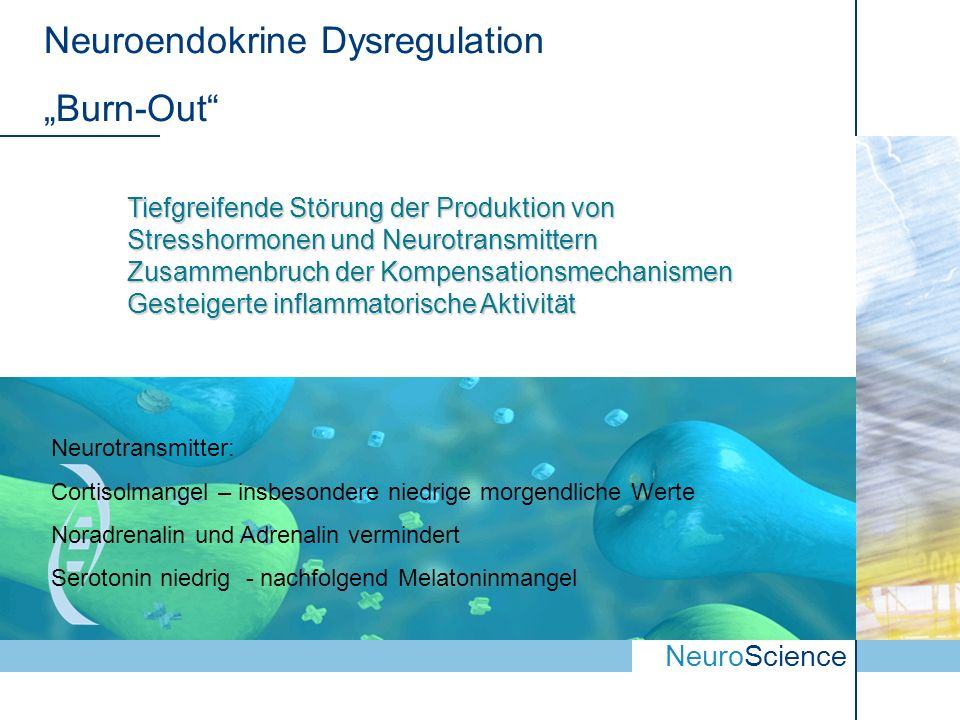 "Neuroendokrine Dysregulation ""Burn-Out"