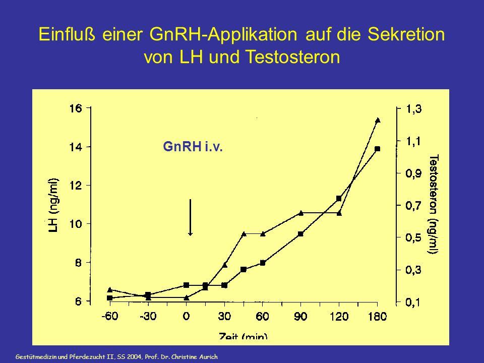 Einfluß einer GnRH-Applikation auf die Sekretion von LH und Testosteron