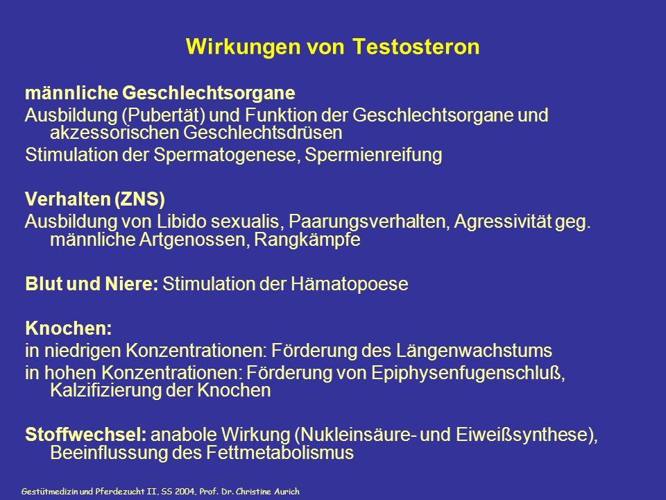 Wirkungen von Testosteron