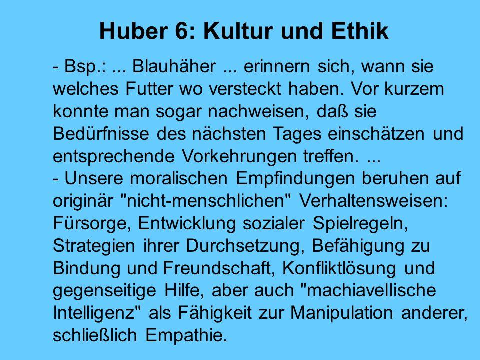 Huber 6: Kultur und Ethik