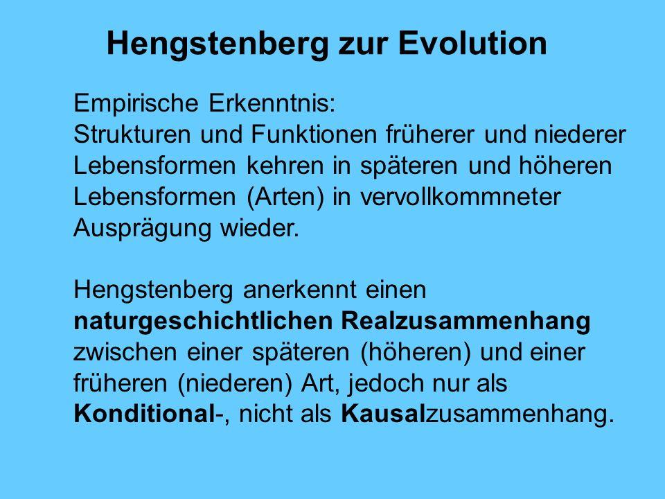 Hengstenberg zur Evolution