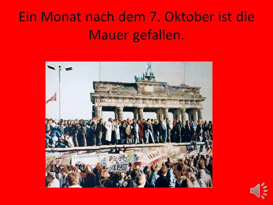 Ein Monat nach dem 7. Oktober ist die Mauer gefallen.