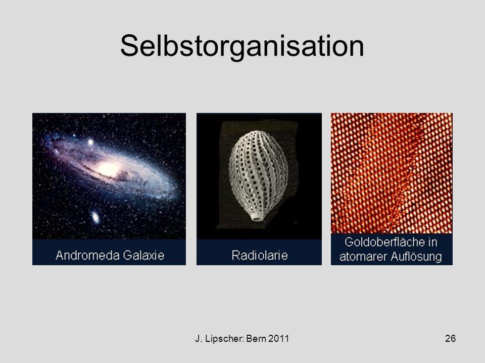 Selbstorganisation J. Lipscher: Bern 2011