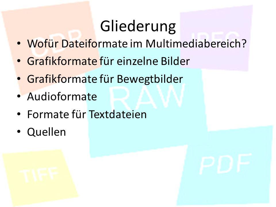 Gliederung Wofür Dateiformate im Multimediabereich