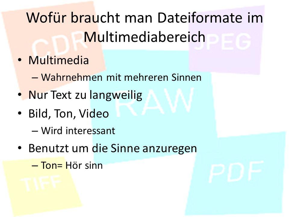 Wofür braucht man Dateiformate im Multimediabereich