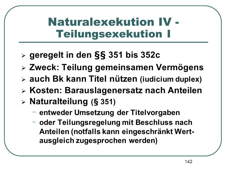 Naturalexekution IV - Teilungsexekution I