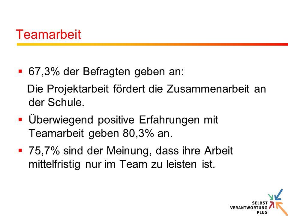 Teamarbeit 67,3% der Befragten geben an:
