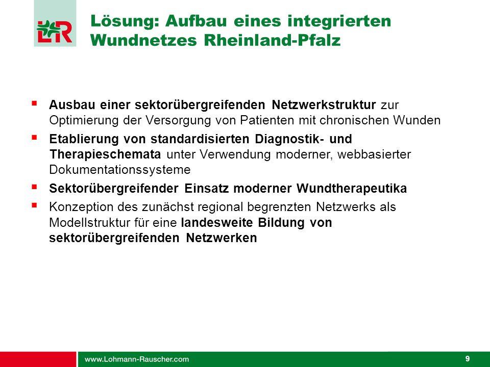 Lösung: Aufbau eines integrierten Wundnetzes Rheinland-Pfalz