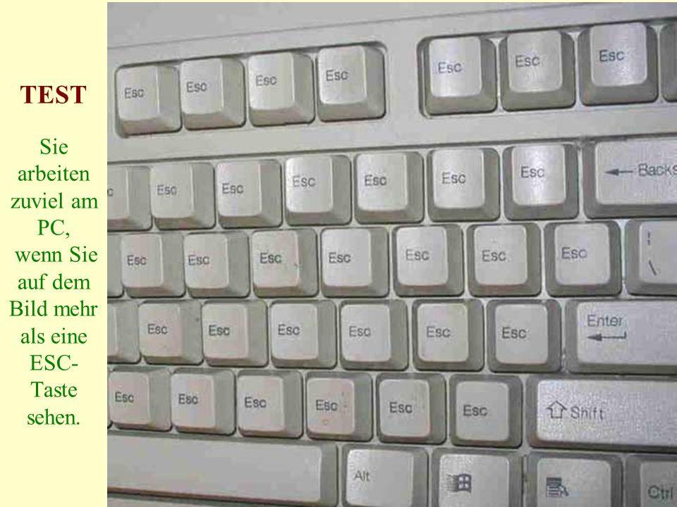 TEST Sie arbeiten zuviel am PC, wenn Sie auf dem Bild mehr als eine ESC-Taste sehen.