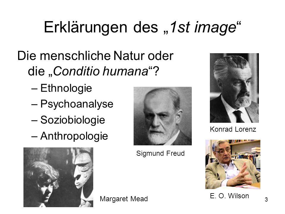 """Erklärungen des """"1st image"""