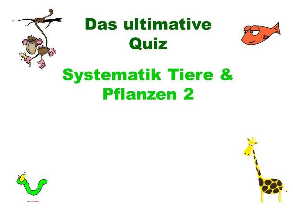 Systematik Tiere & Pflanzen 2