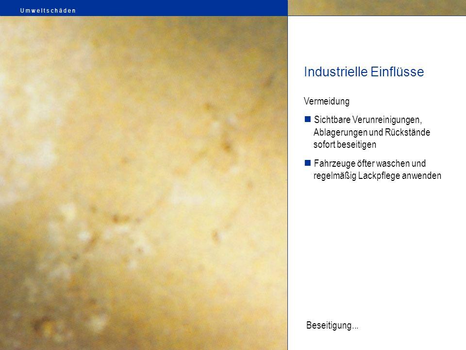 Industrielle Einflüsse