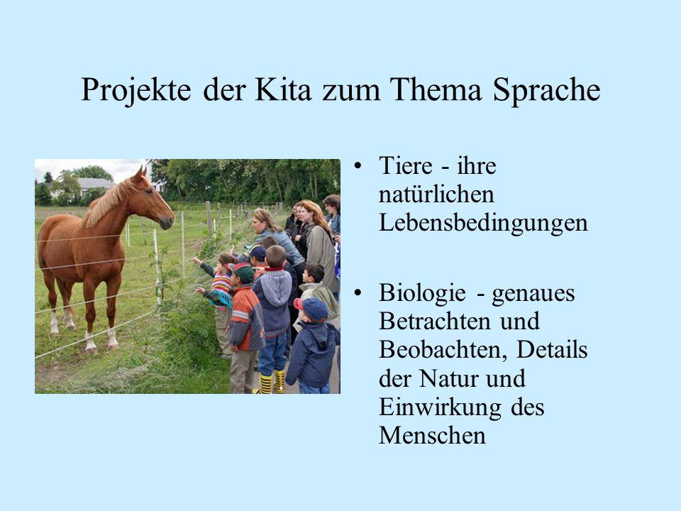 Projekte der Kita zum Thema Sprache