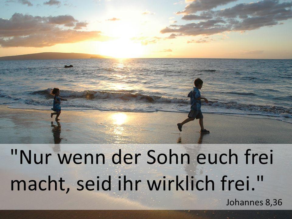 Nur wenn der Sohn euch frei macht, seid ihr wirklich frei.