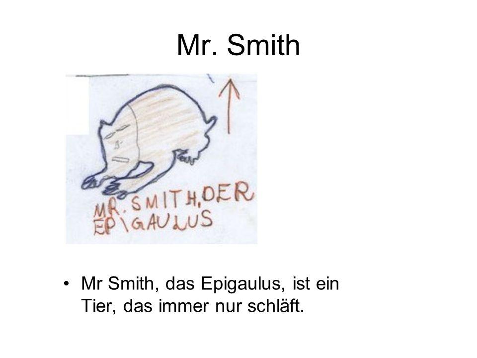Mr. Smith Mr Smith, das Epigaulus, ist ein Tier, das immer nur schläft.