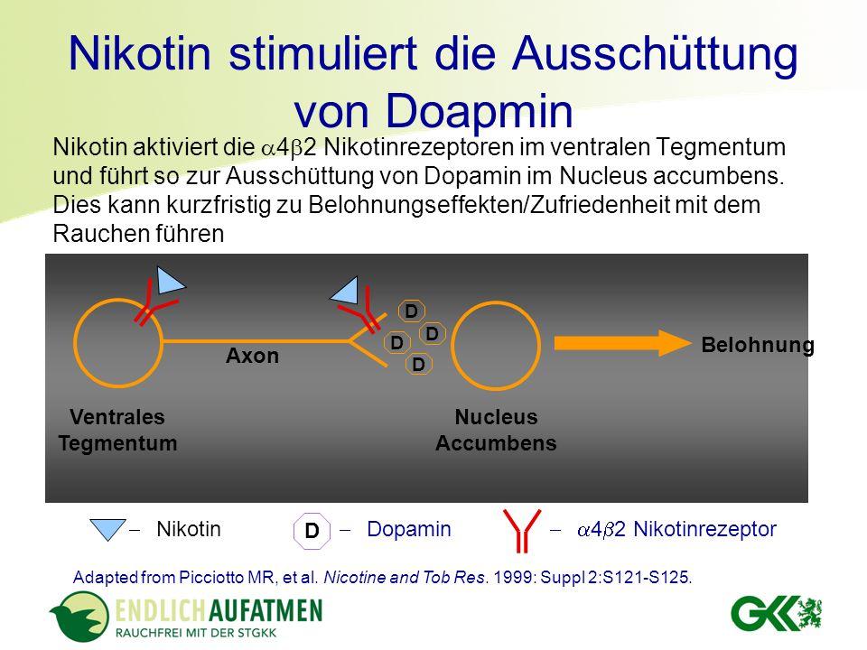 Nikotin stimuliert die Ausschüttung von Doapmin