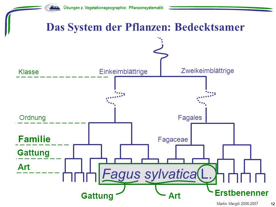 Das System der Pflanzen: Bedecktsamer