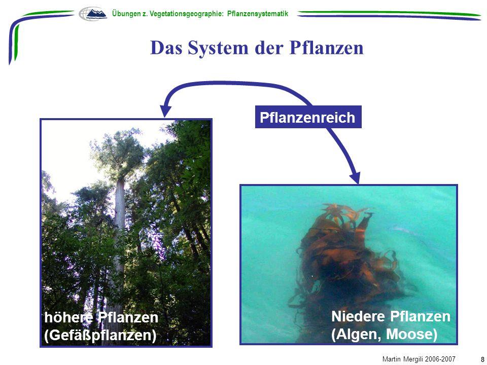 Das System der Pflanzen