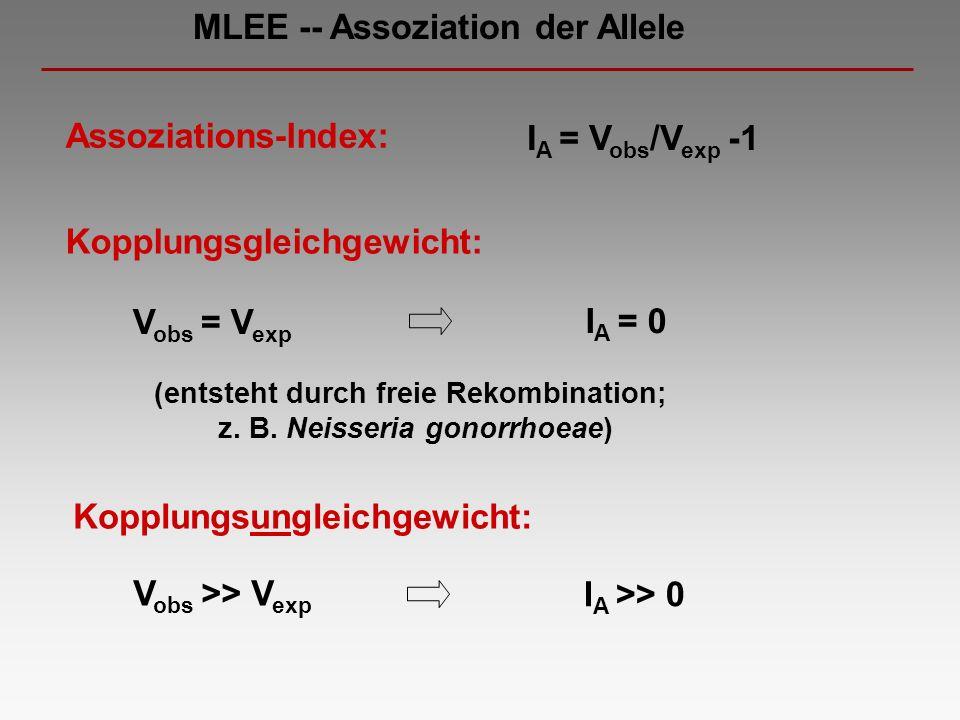 (entsteht durch freie Rekombination; z. B. Neisseria gonorrhoeae)