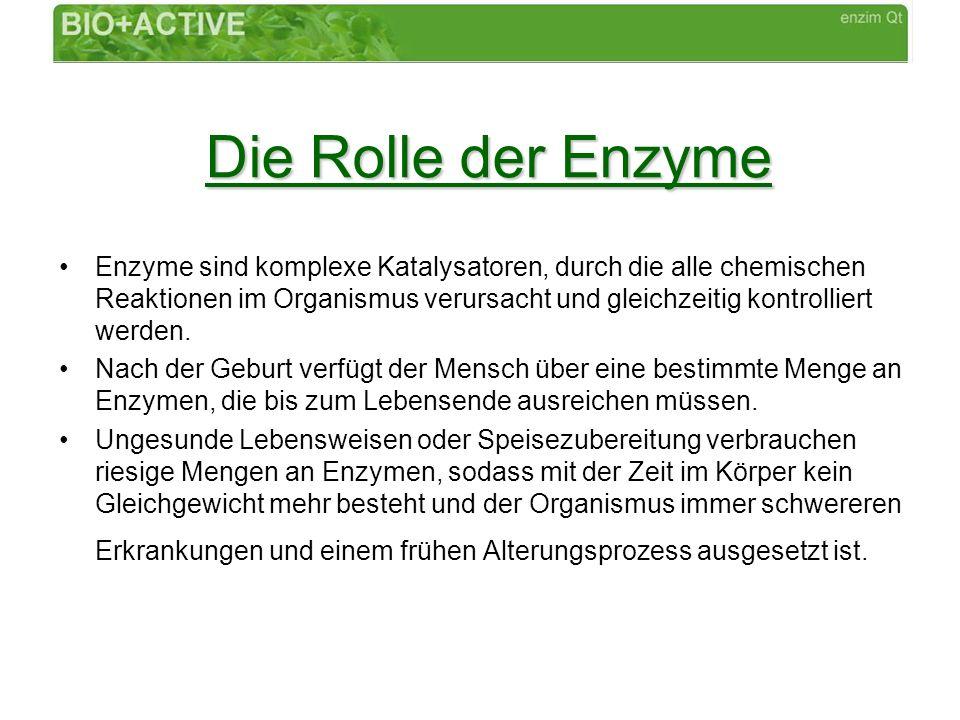 Die Rolle der Enzyme