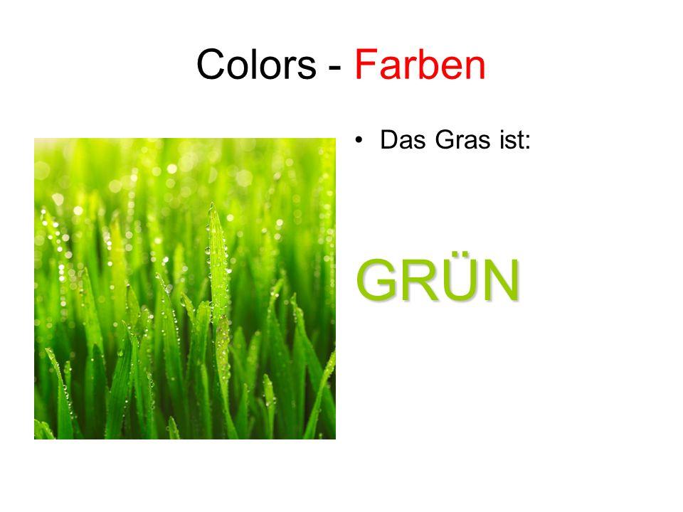 Colors - Farben Das Gras ist: GRÜN