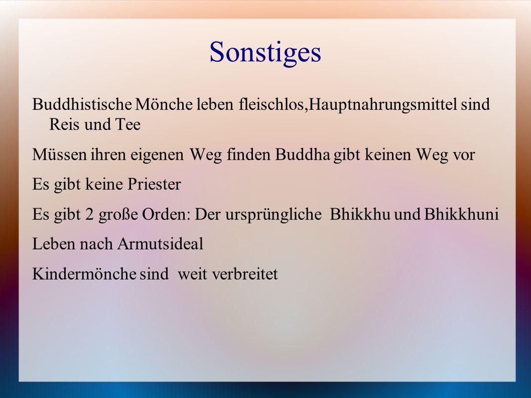 Sonstiges Buddhistische Mönche leben fleischlos,Hauptnahrungsmittel sind Reis und Tee. Müssen ihren eigenen Weg finden Buddha gibt keinen Weg vor.