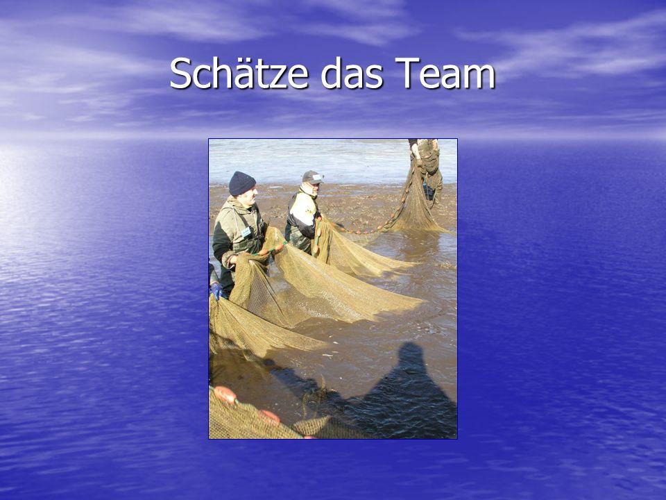 Schätze das Team