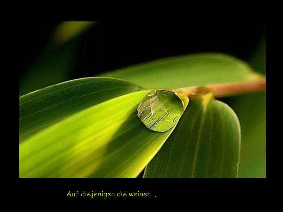 Auf diejenigen die weinen …
