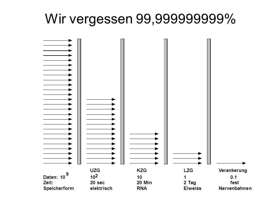 Wir vergessen 99,999999999% UZG KZG LZG Verankerung Daten: 10 9 10 2 1