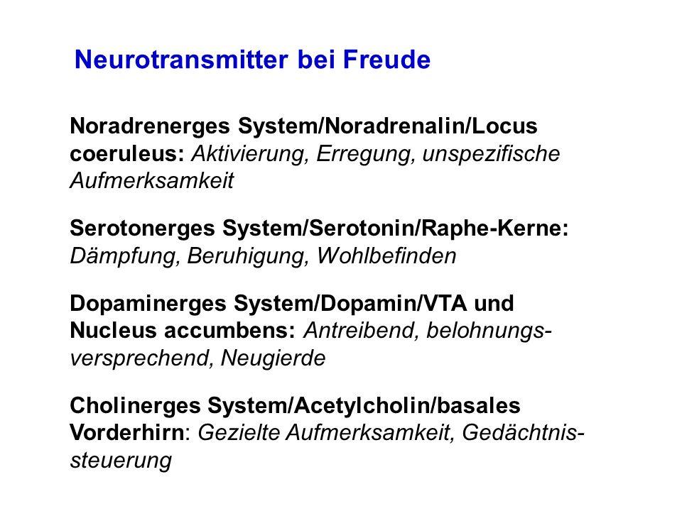 Neurotransmitter bei Freude