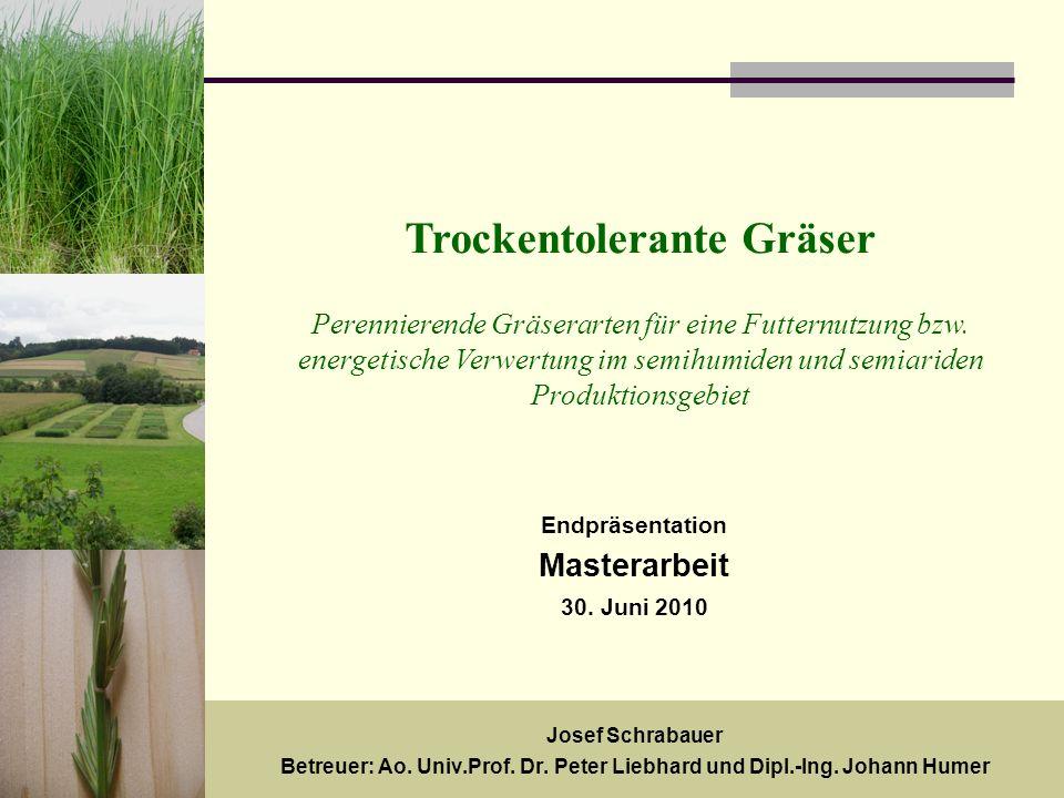 Trockentolerante Gräser Perennierende Gräserarten für eine Futternutzung bzw. energetische Verwertung im semihumiden und semiariden Produktionsgebiet
