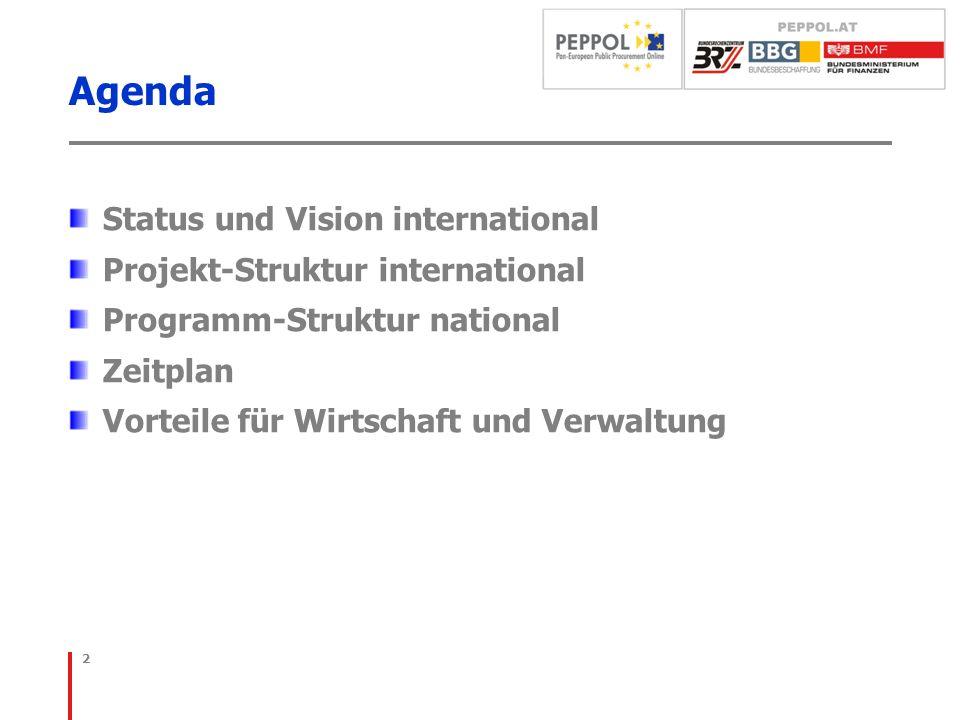 Agenda Status und Vision international Projekt-Struktur international