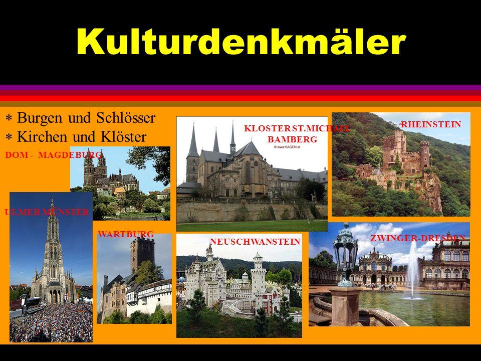 Kulturdenkmäler Burgen und Schlösser Kirchen und Klöster RHEINSTEIN