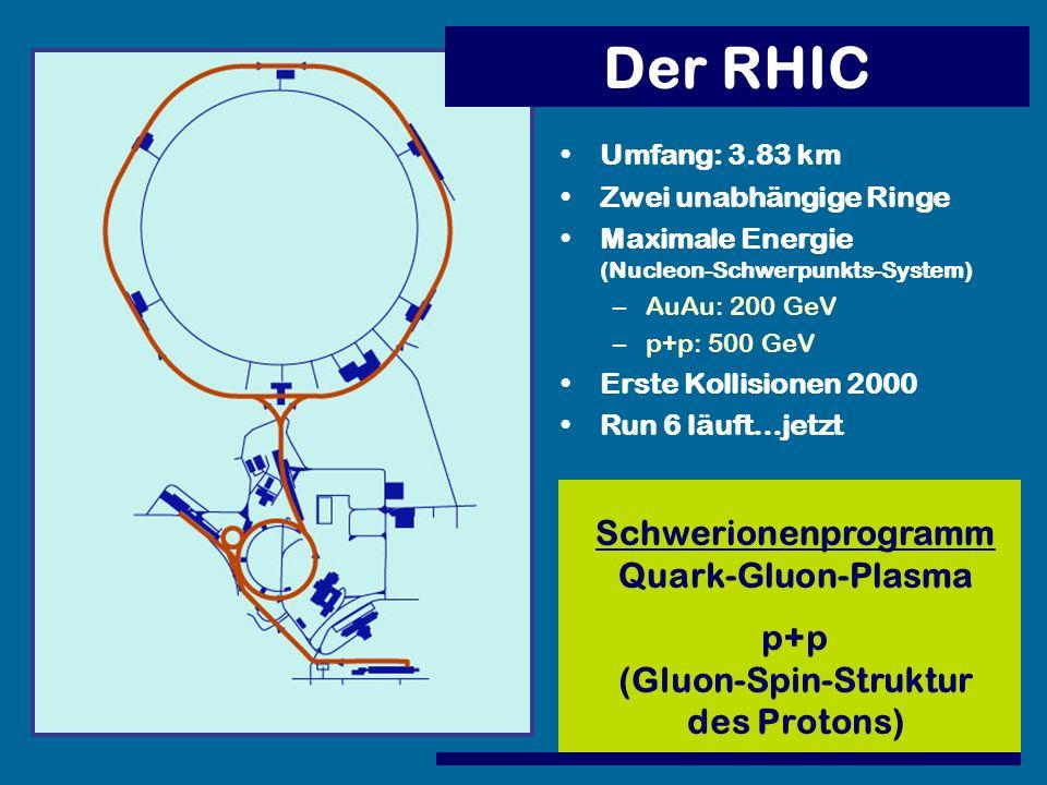 (Gluon-Spin-Struktur