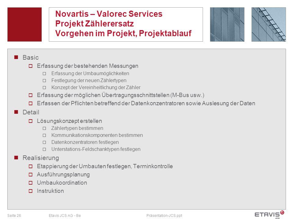 Novartis – Valorec Services Projekt Zählerersatz Vorgehen im Projekt, Projektablauf