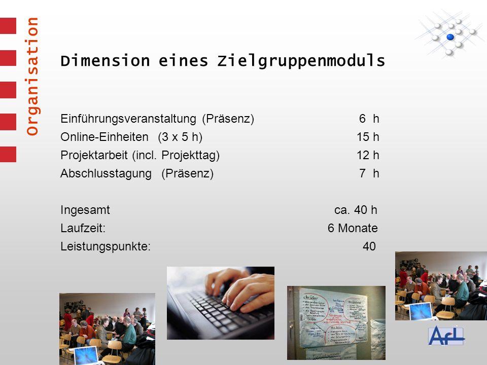 Dimension eines Zielgruppenmoduls Organisation