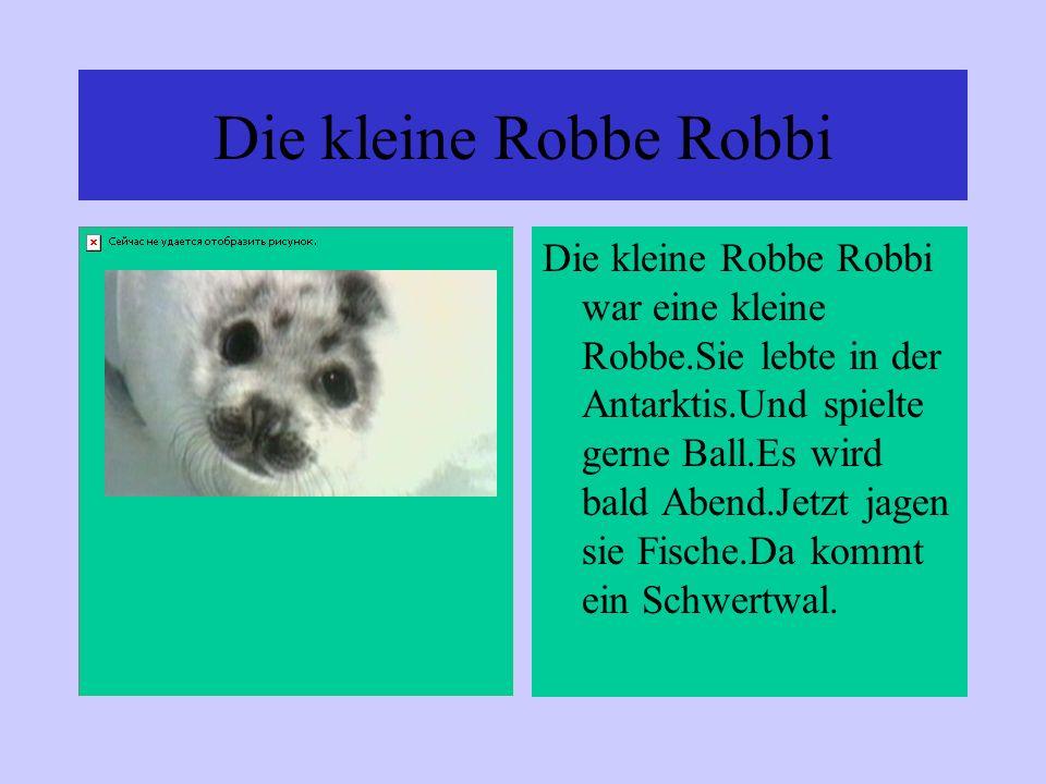 Die kleine Robbe Robbi